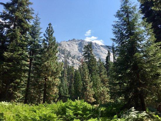 Three Rivers, Californië: The hike is a short hike, 1.7 miles