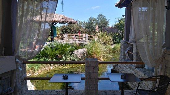 Achtis Hotel: Πινείς το καφεδάκι σου στη λιμνούλα
