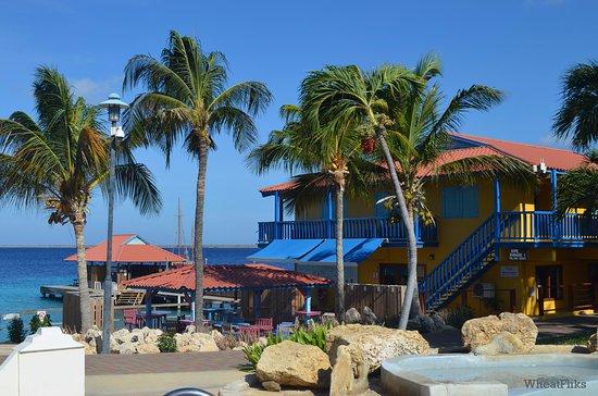 Divi Flamingo Beach Resort And Dive