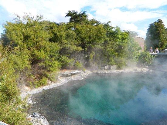 Rotorua District, Νέα Ζηλανδία: Whangapipiro - Rachel Spring