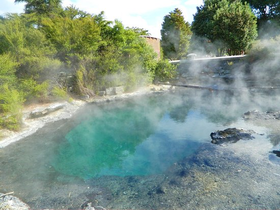 Rotorua District, New Zealand: Whangapipiro - Rachel Spring