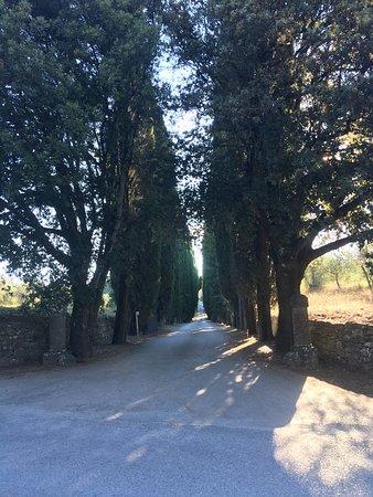 Vagliagli, Italia: photo5.jpg