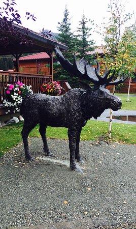 Denali Princess Wilderness Lodge: photo9.jpg