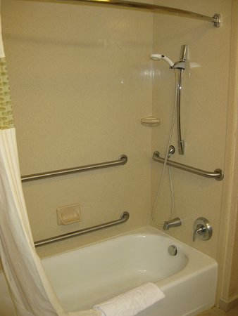 Pocatello, ID: Tub/shower combo with plenty of handle bars and movable shower head