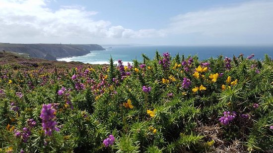 Porthtowan to Chapel Porth