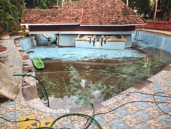 Emarald Ayurveda Resort: Pool area - Aug 2016