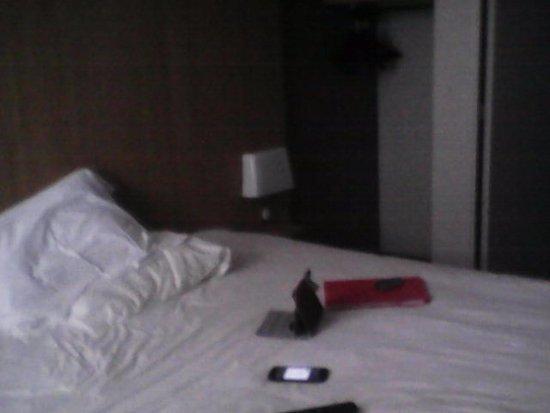c t fen tre photo de b b h tel auxerre 1 mon teau tripadvisor. Black Bedroom Furniture Sets. Home Design Ideas