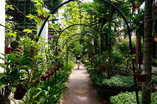Central Boutique Angkor Hotel: pad naar het zwembad toe