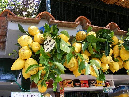 Mount Solaro: Capri citromok
