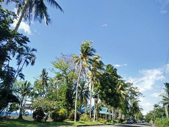 Visayas State University: Alma Mater dear
