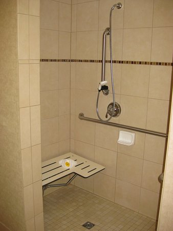 Roll-in shower with movable shower head and pull-down bench ...