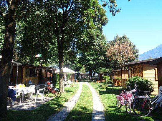 Domaso, Italia: Allée dans le camping