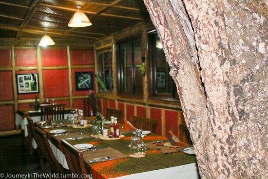 Foto de Nkuringo Bwindi Gorilla Lodge