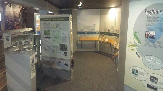 Bay City, MI: Nature center