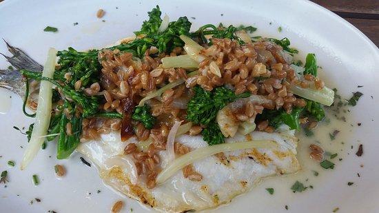 Irvine, Californien: Branzino with farro and broccolini