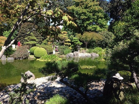 San Mateo, CA: View of pond and gardens