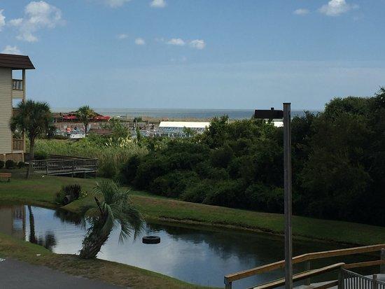 Hilton Head Island Beach & Tennis Resort: View from Room Balcony