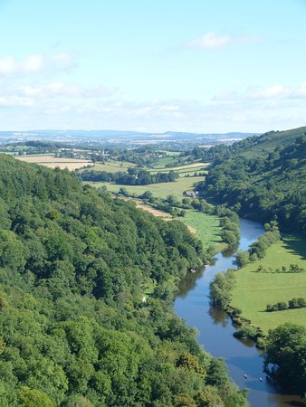 Coleford, UK: View from Symonds Yat rock