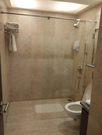 Bathroom- Shower cubicle - Picture of 24 Tech Hotel, Bengaluru ...