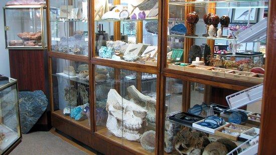 Palmyra, PA: Mineral & Fossil Specimens