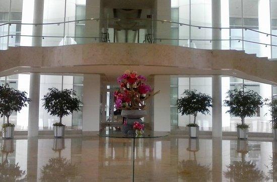 Renaissance Schaumburg Convention Center Hotel: Entry way