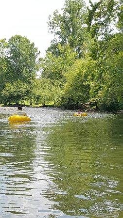 Smoky Mountain River Rat: 20160804_140918_large.jpg