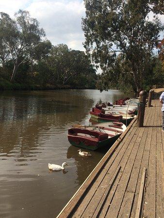 Kew, Australien: Row Boats for hire