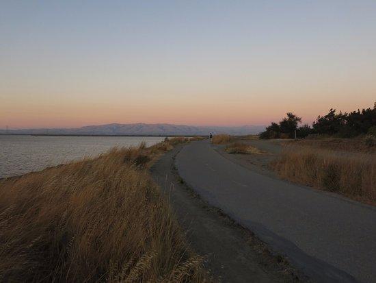 Palo Alto Baylands Nature Preserve 사진