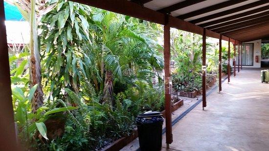 Kimberley Croc Motel: 20160829_064536_large.jpg