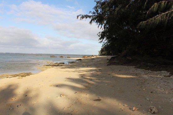 Beach Cocomo: photo1.jpg