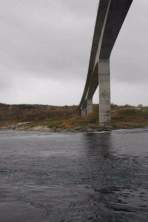 Bodo, Noruega: Vista del puente