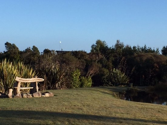 Westport, Nueva Zelanda: Yard in front of our cabin