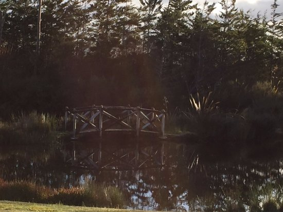 Westport, Nueva Zelanda: Bridge over Pond at Bird Ferry Lodge Cabin