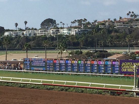 Del Mar, CA: Looking at the tote board
