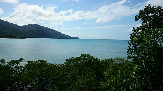Cape Tribulation, Australia: DSC_0319_large.jpg