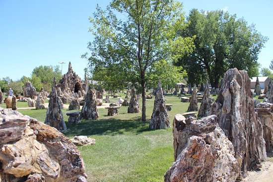 Sandhills Journey Scenic Byway: Everything is Petrified Wood