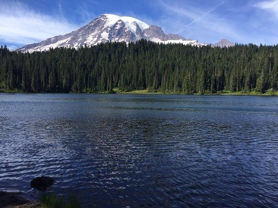 Mount Rainier: photo2.jpg