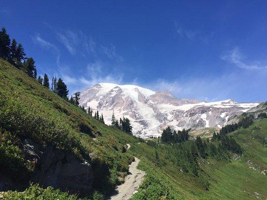 Mount Rainier: photo3.jpg