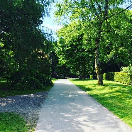 Blarney, Ιρλανδία: The gardens