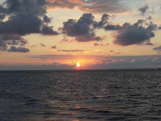 Isle of Palms Image