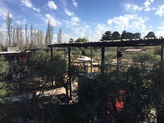 Maipu, Argentina: photo1.jpg
