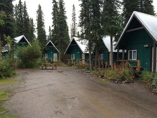 The Perch Resort: Group of Cabins