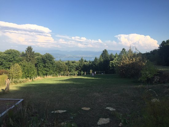 Divonne-les-Bains, ฝรั่งเศส: Vista dal ristorante sul lago e lemano e le Alpi