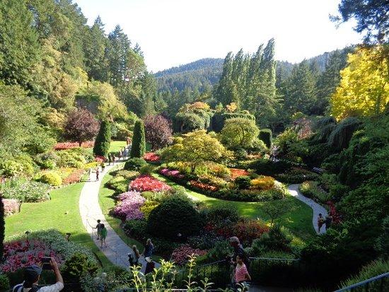 Butchart Gardens صورة فوتوغرافية