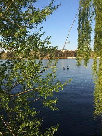 Forrest Hotel And Apartments: LAKE BURLEY GRIFFIN