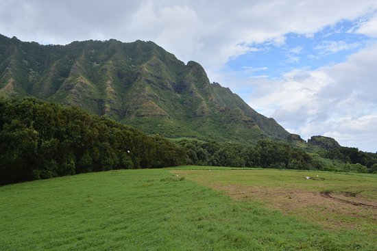 Kaneohe, HI: Jurassic Park II - place of scenes