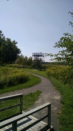 Seneca Falls, NY: Observatory in background