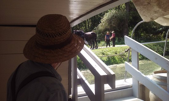 Canal Fulton, OH: Our Tour Guide looking out at the horses who would pull our boat down the Canal