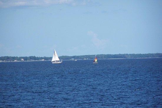 Havelock, Caroline du Nord : sailboats