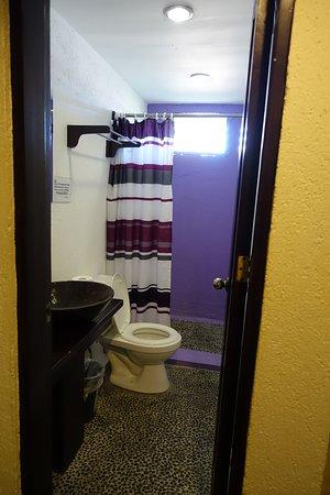 ذا ليزي دوج بد آند بركفاست: 1大床的小房間的廁所